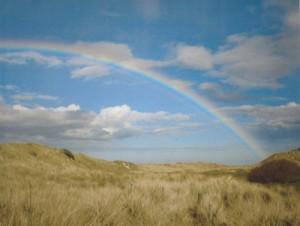 Rainbow-Cynthia-Abbott-Landscape